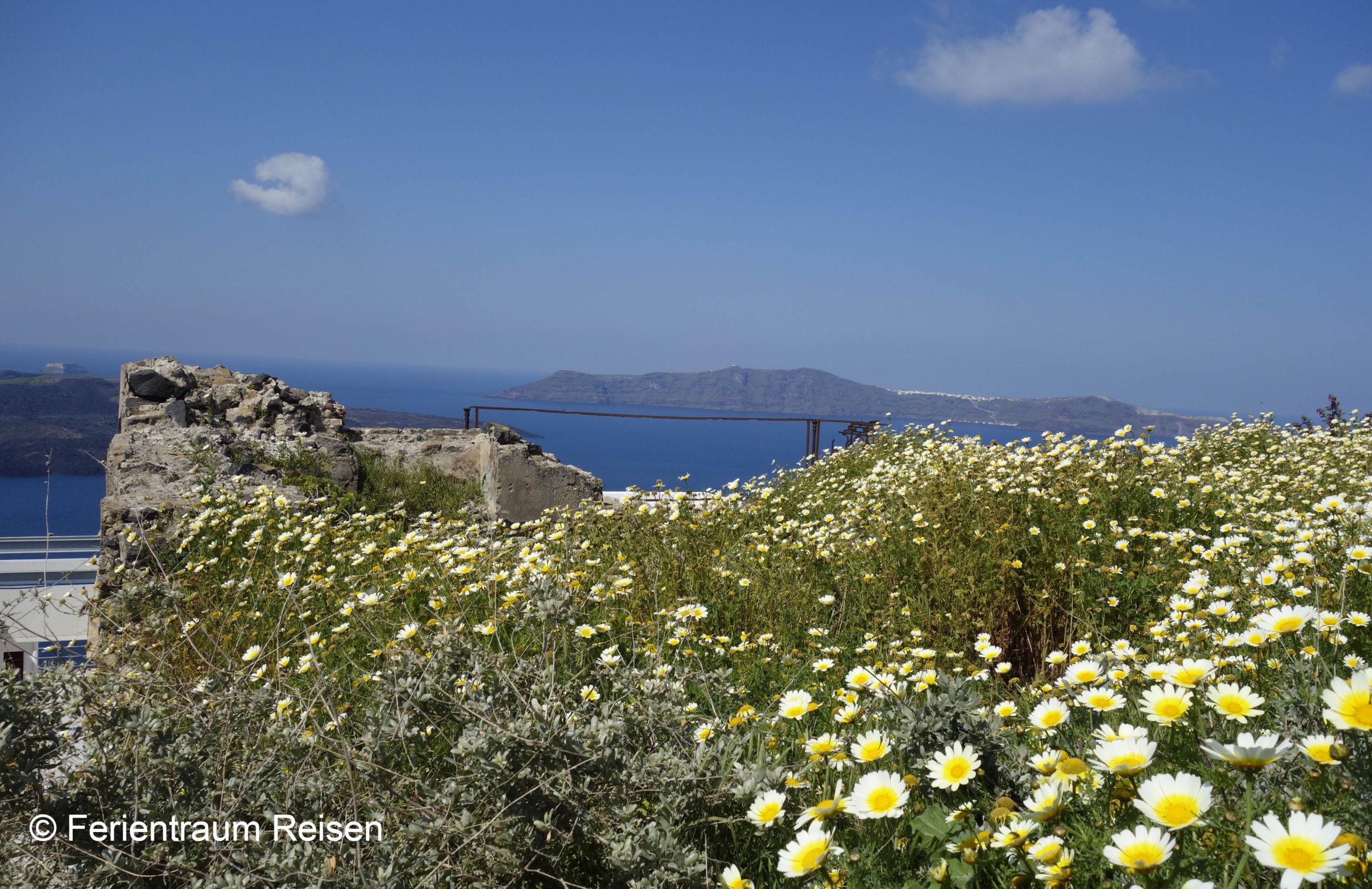 Ferientraum Reisen Blumenblick aufs Meer