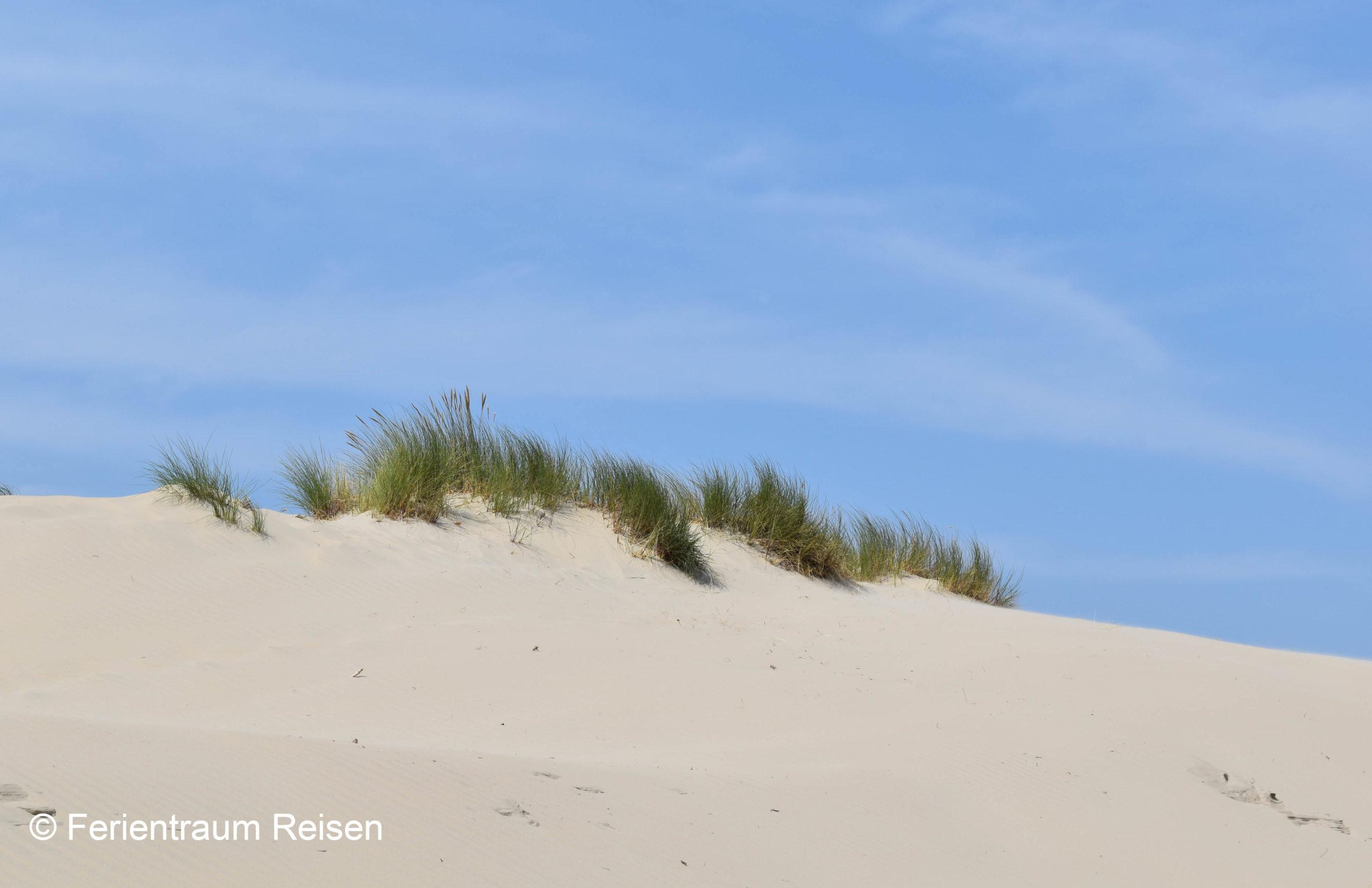 Ferientraum Dünen Borkum Strand